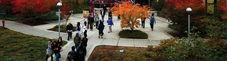 Photo of students walking on campus in the fall